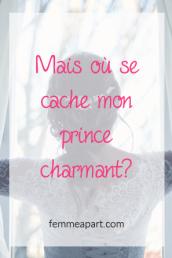 Mais où se cache mon prince charmant.png